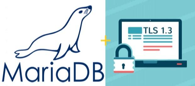 Come configurare MariaDB con TLS 1.3 e proteggere le connessioni dei client